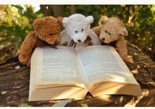 Tre orsetti che leggono un libro